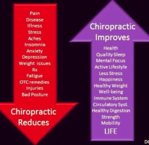 chiropractic reduces vs stimulates